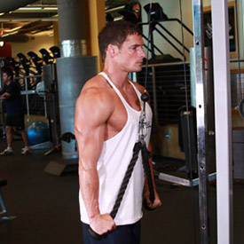 Rope Triceps Push-Down