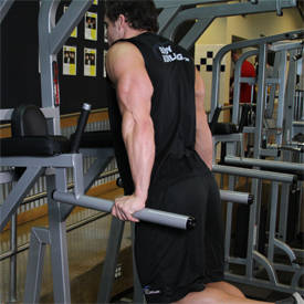 Dips - Triceps Version