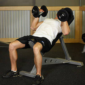 Hammer Grip Incline DB Bench Press