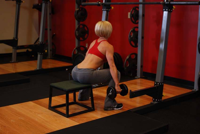 dumbbell squat to a bench exercise guide and video