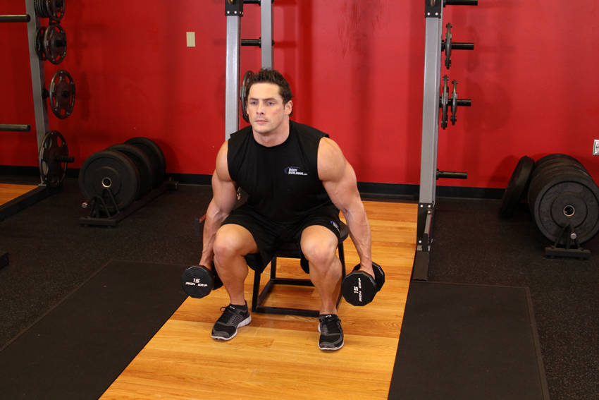 Dumbbell Squat To A Bench image