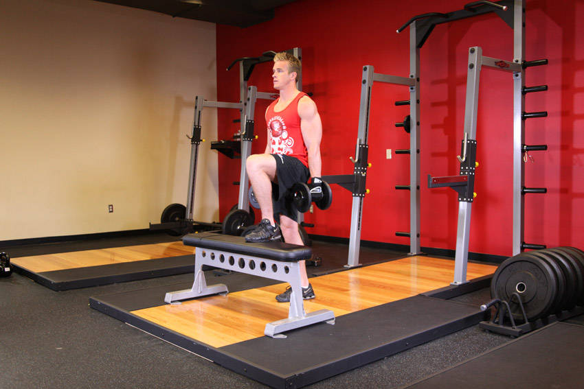 dumbbell step ups exercise guide and video
