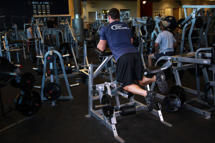 Standing Leg Curl image