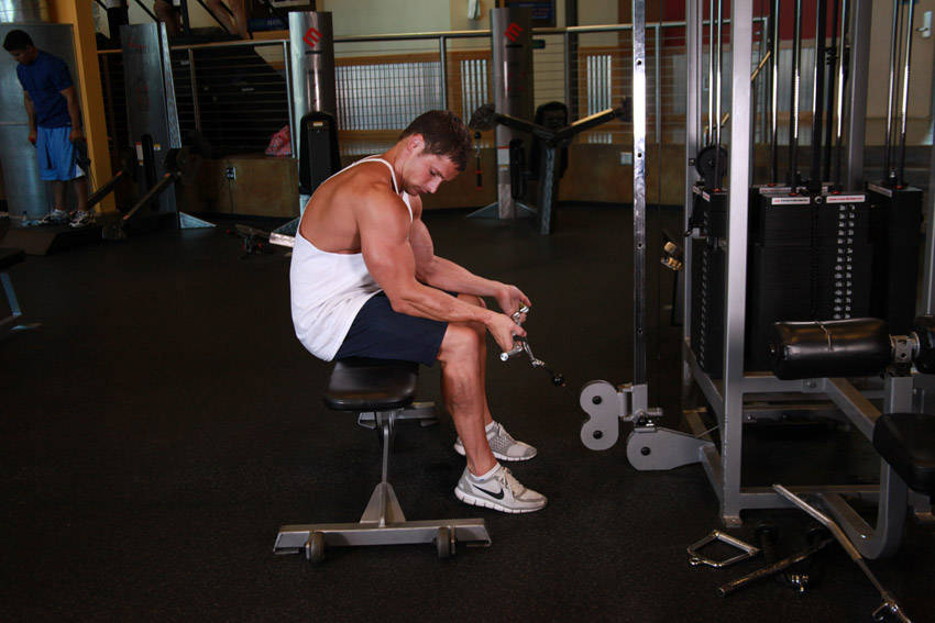 Seated Two-Arm Palms-Up Low-Pulley Wrist Curl image