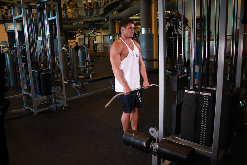 Upright Cable Row Exercise Guide and Video