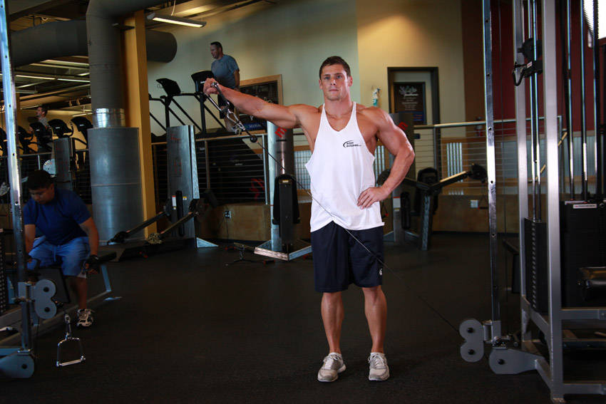Standing Low-Pulley Deltoid Raise Exercise Guide and Video