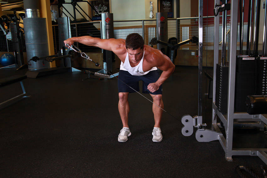 Bent Over Low-Pulley Side Lateral Exercise Guide and Video