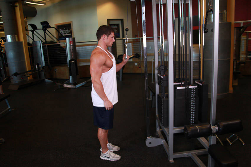 Cable Extensions Workout : Cable built moves for massive muscle
