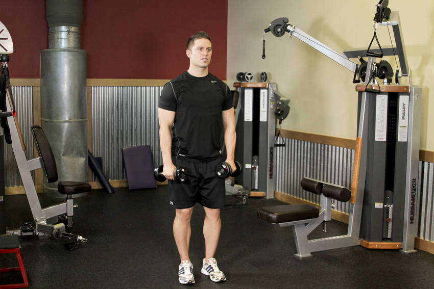 Alternating Deltoid Raise Exercise Guide and Video