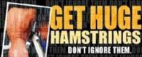 Get Huge Hamstrings! Don't Ignore Them.