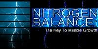 Nitrogen Balance: The Key To Muscle Growth