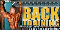Back Training: What Exercises Do You Need To Perform?