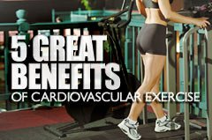 5 Great Benefits Of Cardiovascular Exercise!