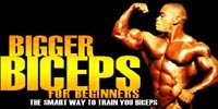 Bigger Biceps For Beginners - The Smart Way To Train Your Biceps