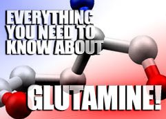 Everything You Need To Know About Glutamine!