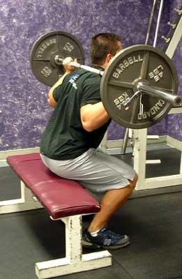 Box squats bodybuilding