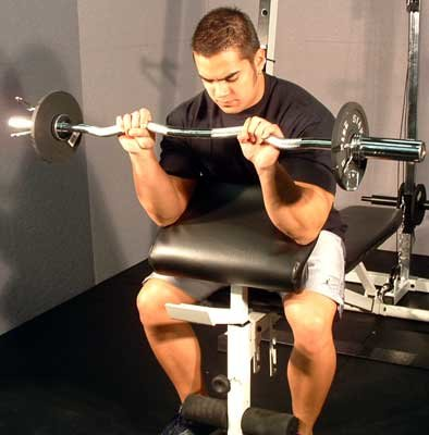 Tips Sit On Preacher Bench Placing Back Of Arms Pad The Seat Should Be Adjusted To Allow Arm Pit Rest Near Top