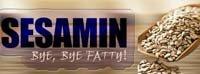 Sesamin - Bye, Bye Fatty!