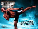 The Striking Truth: Georges St-Pierre!