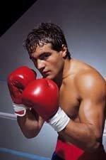 Boxer Bob