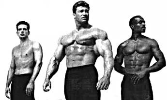 whats the difference between lean and bulk muscle yahoo