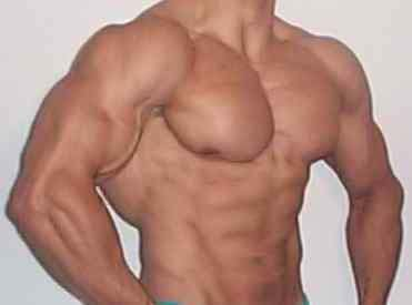 ab training routines bodybuilding and figure