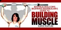 The Beginning Bodybuilder's Guide To Building Muscle.