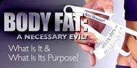 Body Fat: A Necessary Evil?