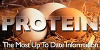 Protein, The Most Up To Date Information.