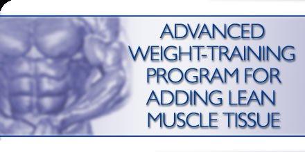 mass gain training program pdf