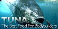 Tuna = The Best Food For Bodybuilders!