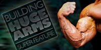 Triceps Training: The Finshing Touch!