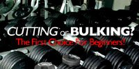Cutting Or Bulking?