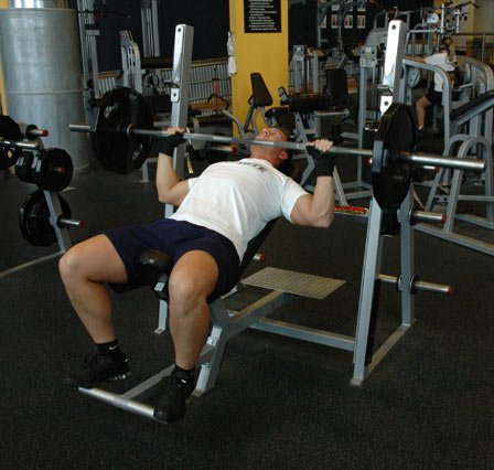 stubborn muscle hypertrophy workouts chapters 13
