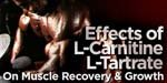 Effects Of L-Carnitine-L-Tartrate On Muscle Recovery!