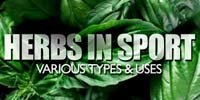 Herbs In Sport: Learn About Various Types & Uses.