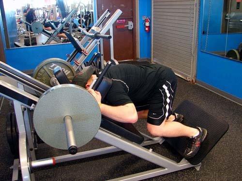 hack squat machine benefits