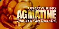 Uncovering Agmatine - What Is It & What Does It Do?