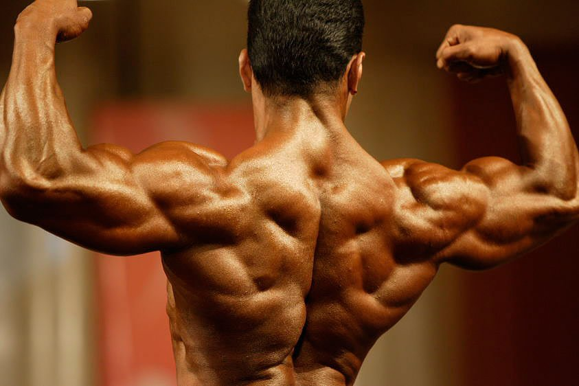 Bodybuilder Back Muscles
