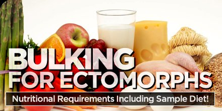 Bulking For Ectomorphs Nutritional Requirements Including