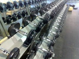 Weights at Evolution Physical Excellence