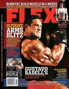 Flex November 2008