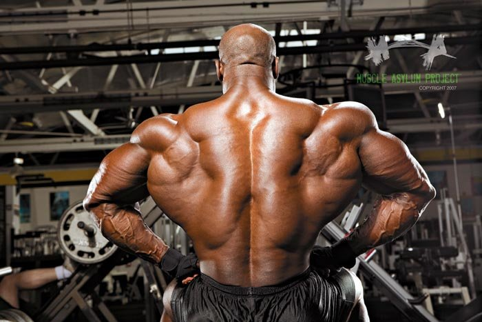 http://www.bodybuilding.com/fun/images/2008/joel_stubbs_back_routine_b.jpg