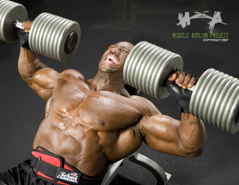 Image result for muscle gain supplements