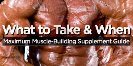 The Best Muscle Mass Building Supplements