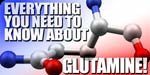 All About Glutamine!