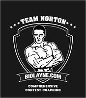 Team Norton Logo