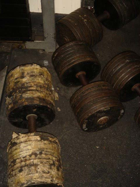 Temple Gym Dumbbells