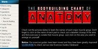 Anatomy Main Page!