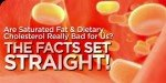 Are Saturated Fat & Dietary Cholesterol Really Bad For Us?